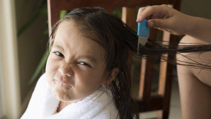 Saçta Bit ve Sirke Nasıl Temizlenir